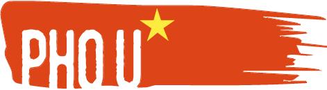 Партнёр на start-up, запускающий бренд-шеф кафе вьетнамской уличной еды Pho U